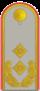 DH321-Generalmajor.png
