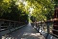 DSC00418宝山滨江公园 Baoshan Riverside Park.jpg