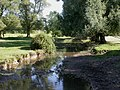 Damerham, Allen River - geograph.org.uk - 1484900.jpg