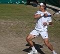 David Ferrer - 2011 Wimbledon.jpg