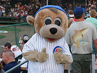 "A color photograph of a person wearing an anthropomorphized grizzly bear costume and dressed in a white pinstriped baseball uniform with a red, white, and blue patch on the chest reading, ""CUBS"""