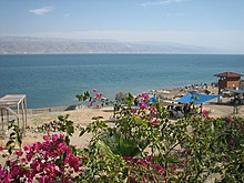 Dead Sea Qalya Beach3.JPG