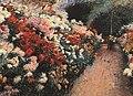 Dennis Miller Bunker - Chrysanthemums.jpg