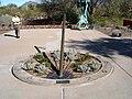 Desert Botanical Gardens Sundial by Carmichael.jpg