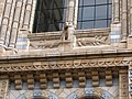 Detail on a window at the Natural History Museum - geograph.org.uk - 1299875.jpg
