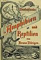 Deutschlands Amphibien und Reptilien (1890) (20895757001).jpg