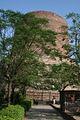 Dhamek Stupa Back.JPG