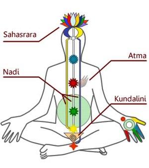 Sahaja Yoga - Chakra Kundalini Diagram