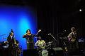 Dianne Reeves @ Jazz Fest Sarajevo 2008 (3005616933).jpg