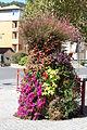 Digne-les-Bains 20130912 16.jpg