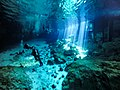 Diving the Cenotes in Yucatan, Mexico (41791832870).jpg