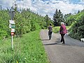 Donauwarte - panoramio.jpg