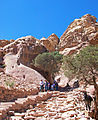 Donkey and hikers on path to Ad-Deir, Petra.jpg