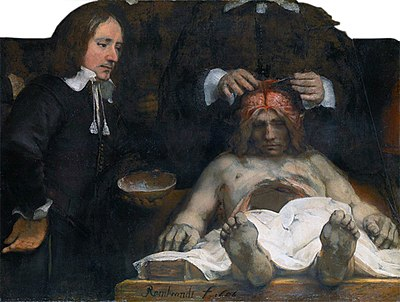 The Anatomy Lesson Of Dr Nicolaes Tulp Wikiwand