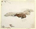 Drawing, Sheep Resting, 1878 (CH 18175199).jpg