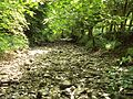 Dried-up river bed near Loggerheads - DSC06110.JPG