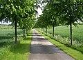 Driveway in the Kirklees Estate, Clifton - geograph.org.uk - 177666.jpg