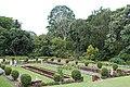 Durban, Botanical Gardens - panoramio - Frans-Banja Mulder.jpg