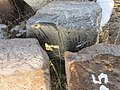 Dzagavank (khachkar) (174).jpg