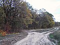 E581, Moldova - panoramio (29).jpg