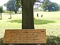 Elizabethan Tree near Hatfield House - geograph.org.uk - 566881.jpg