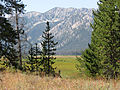 Elk Meadow (15383625912).jpg