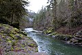 Elkhorn Creek, Marion County, OR.jpg