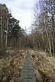 Emer Bog boardwalk - geograph.org.uk - 1072892.jpg