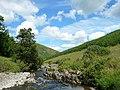 Ettrick Water - geograph.org.uk - 51443.jpg