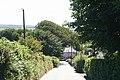 Exmoor, lane to Honeymead Farm - geograph.org.uk - 519979.jpg