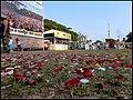 Expoflora - Holambra - panoramio.jpg