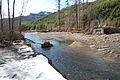 FEMA - 40060 - Tilton River in Washington.jpg