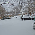 FEMA - 46049 - Snow covers the Denton, TX area.jpg