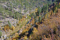 Fall colors in East Clear Creek (4016318509).jpg