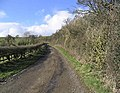 Farm track - geograph.org.uk - 352799.jpg