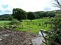 Farm track - geograph.org.uk - 509027.jpg