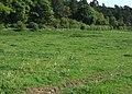 Farmland off Common Lane - geograph.org.uk - 1306651.jpg