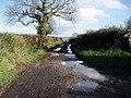 Farthing Lane - geograph.org.uk - 1619607.jpg