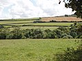 Fields by Watergate Farm, Rosenannon - geograph.org.uk - 221917.jpg