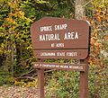 Flickr - Nicholas T - Spruce Swamp Natural Area (1).jpg