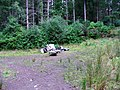 Fly-tipping - geograph.org.uk - 247343.jpg