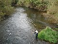 Fly fishing on the river Lugg - geograph.org.uk - 619720.jpg