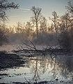 Foggy Morning (188709035).jpeg
