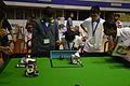 Football Match - Indian National Championship - WRO - Kolkata 2016-10-22 1122.JPG