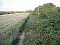 Footpath along field boundary - geograph.org.uk - 591888.jpg