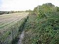 Footpath along field boundary - geograph.org.uk - 591888.jpg
