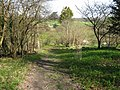 Footpath approach to Willow Cottage - geograph.org.uk - 1800674.jpg