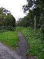 Footpath off Castle Orchard - geograph.org.uk - 2252133.jpg