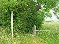Footpath to Station Farm - geograph.org.uk - 1374809.jpg