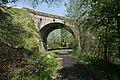 Footpath under the Salterland Viaduct (geograph 4948819).jpg